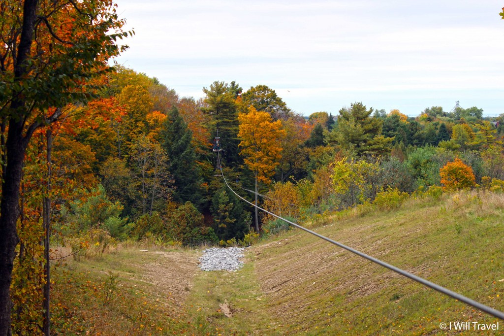 Treetop Eco Adventure Park in the fall